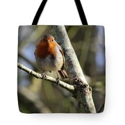 Robin On Branch Donegal Tote Bag