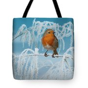 Robin On Frosty Grass Tote Bag