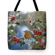 Robin On Holly Branch Tote Bag