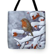 Robin On Snow-covered Rose Hips Tote Bag