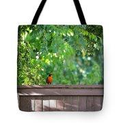 Robin On The Backyard Fence Tote Bag