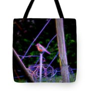Robin On The Wires Tote Bag