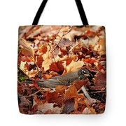 Robin Playing In Fallen Leaves Tote Bag
