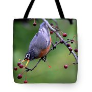 Robin Reaching For Berry Tote Bag