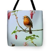 Robin Singing On Flowering Currant Tote Bag