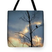 Robin Watching Sunset After The Storm Tote Bag