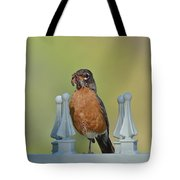 Robin With Worm II Tote Bag