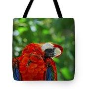 Rock A Bye Birdie Tote Bag