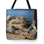 Rock And Root Tote Bag