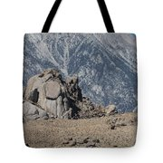Rock And Sand Tote Bag
