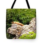 Rock Chuck Tote Bag