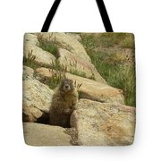 Rock Critter Tote Bag
