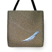 Rock Feather Glass Tote Bag