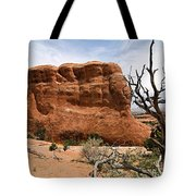 Rock Fin -- Arches National Park Tote Bag