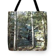 Rock Formation 3 - Ricketts Glen Tote Bag