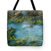 Rock Formations In The Sea, Bird Rock Tote Bag