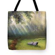Rock In Sunlight Tote Bag