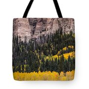 Rock Ledge Tote Bag