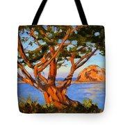 Rock Reflection - Morro Bay Tote Bag