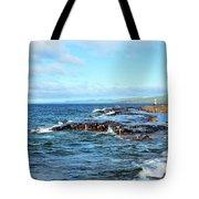 Rock Shore Tote Bag