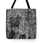Rock Side Bw #g8 Tote Bag