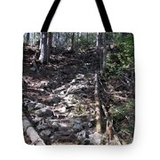 Rock Staircase Tote Bag