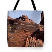 Rock Texture And Lichen Tote Bag