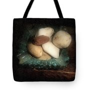Rocks And Dust Tote Bag