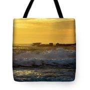 Rocks At Palm Beach At Sunrise Tote Bag