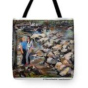 Rocks On The Brandywine Tote Bag