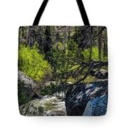 Rocks Water And Knarly Branches Tote Bag