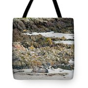 Rocky And Sandy Beach Tote Bag
