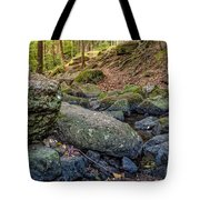Rocky Brook Tote Bag