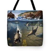 Rocky California Shore Tote Bag