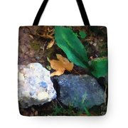 Rocky Ground Tote Bag