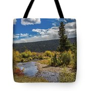Rocky Mountain Afternoon Tote Bag