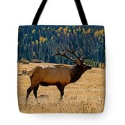 Rocky Mountain Bull Elk Tote Bag