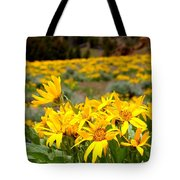 Rocky Mountain Helianthella Tote Bag