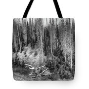 Rocky Mountain High Elevation Forest Large Panorama Tote Bag