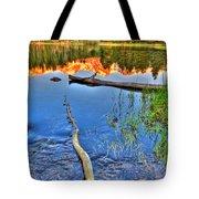 Rocky Mountain Lake Tote Bag
