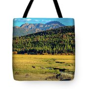 Rocky Mountain National Park Elk Tote Bag
