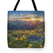 Rocky Mountain National Park Summer Sunflowers Pano 1 Tote Bag