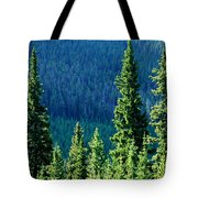 Rocky Mountain Skyline Tote Bag