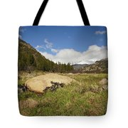 Rocky Mountain Valley Tote Bag