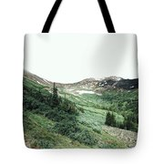 Rocky Mountain Vibes Tote Bag