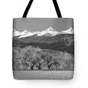 Rocky Mountain View Bw Tote Bag