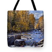 Rocky Mountain Water 8 X 10 Tote Bag by Kelley King
