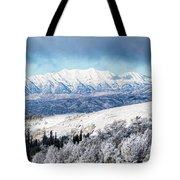 Rocky Mountain Winter Tote Bag