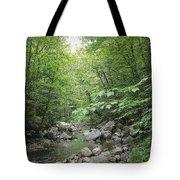 Rocky River In Green Tote Bag