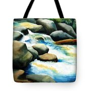 Rocky River Run Tote Bag